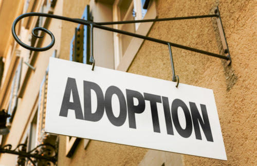 "Adoption ≠ ""Giving Up"""
