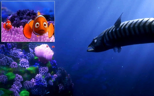 """Finding Nemo"" and searching for Down Syndrome"